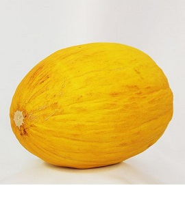 Honigmelonen