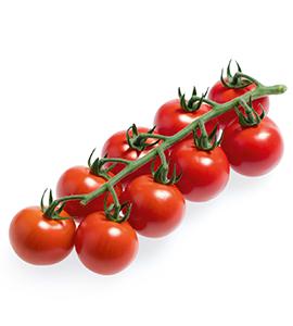 koktail-tomaten